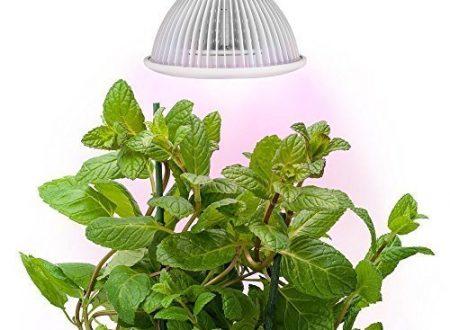 Video Recensione Morpilot® – Faretto LED da 12 W per serra e coltivazione idroponica